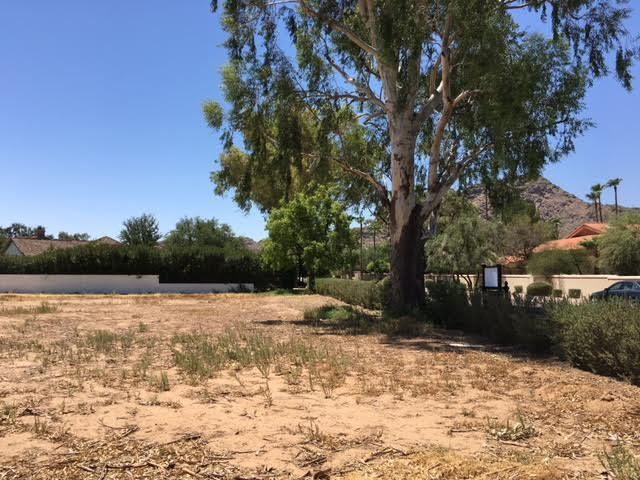 paradise valley lots